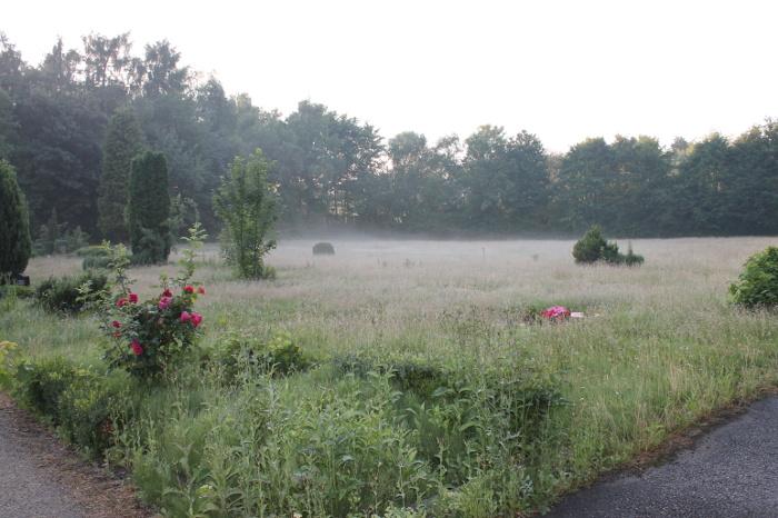 Marienfriedhof Witten, neblige Wiese Richtung Norden