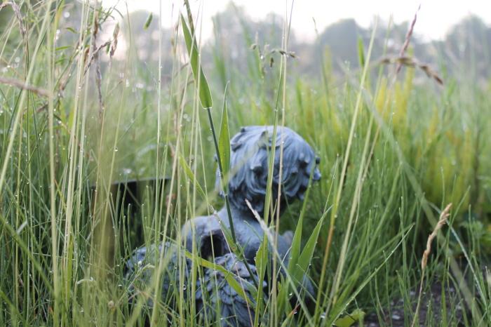Marienfriedhof Witten Engelsfigur auf einem Grab im hohen Gras mit Tau und Regentropfen